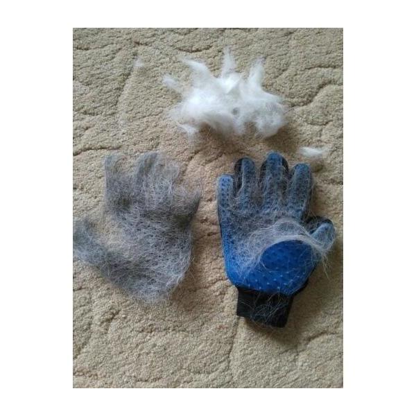 Handske med silikonebørster til hund / kat | Pet Grooming Glove